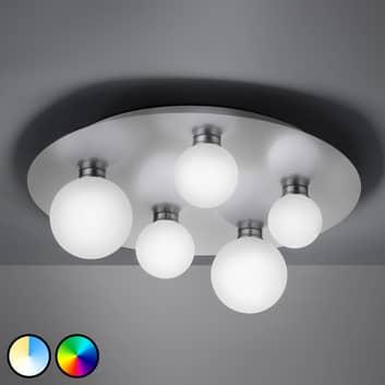 Trio WiZ Dicapo LED-Deckenleuchte, fünfflammig