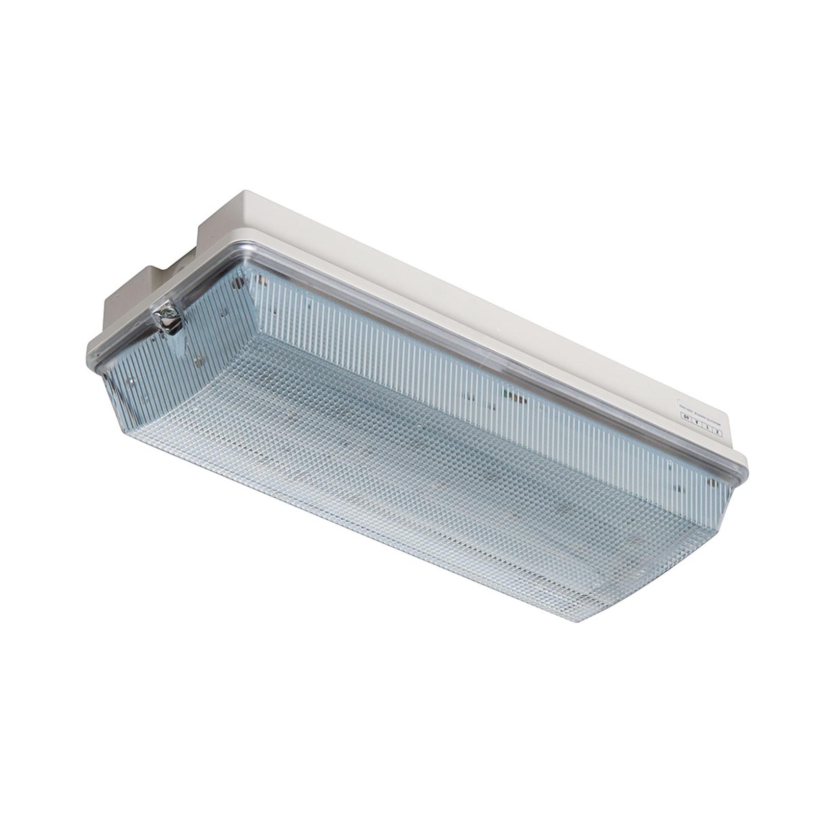 Lampa ewakuacyjna LED Frost-Lux do -30°C
