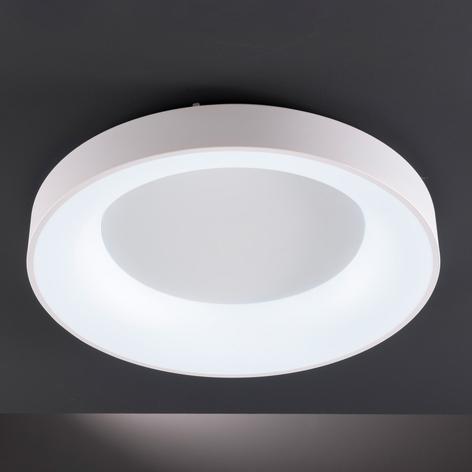 LED-Deckenleuchte Cameron mit Fernbedienung, Ø45cm