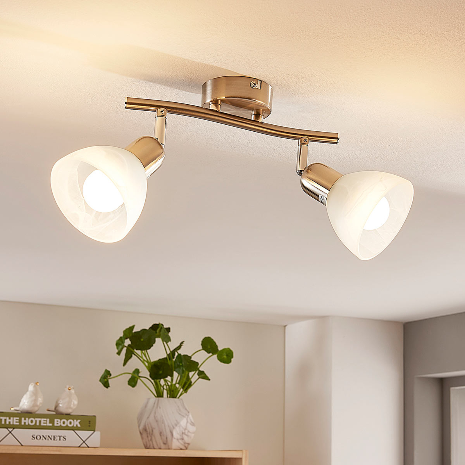 2-lamps LED plafondlamp Paulina, nikkelkleuren