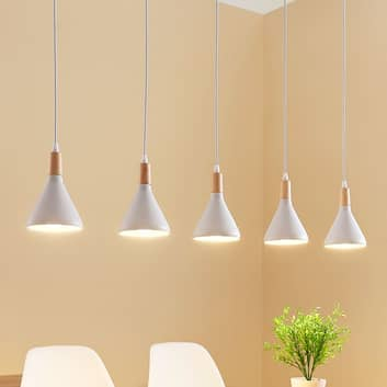LED-Pendelleuchte Arina in Weiß, 5-flammig