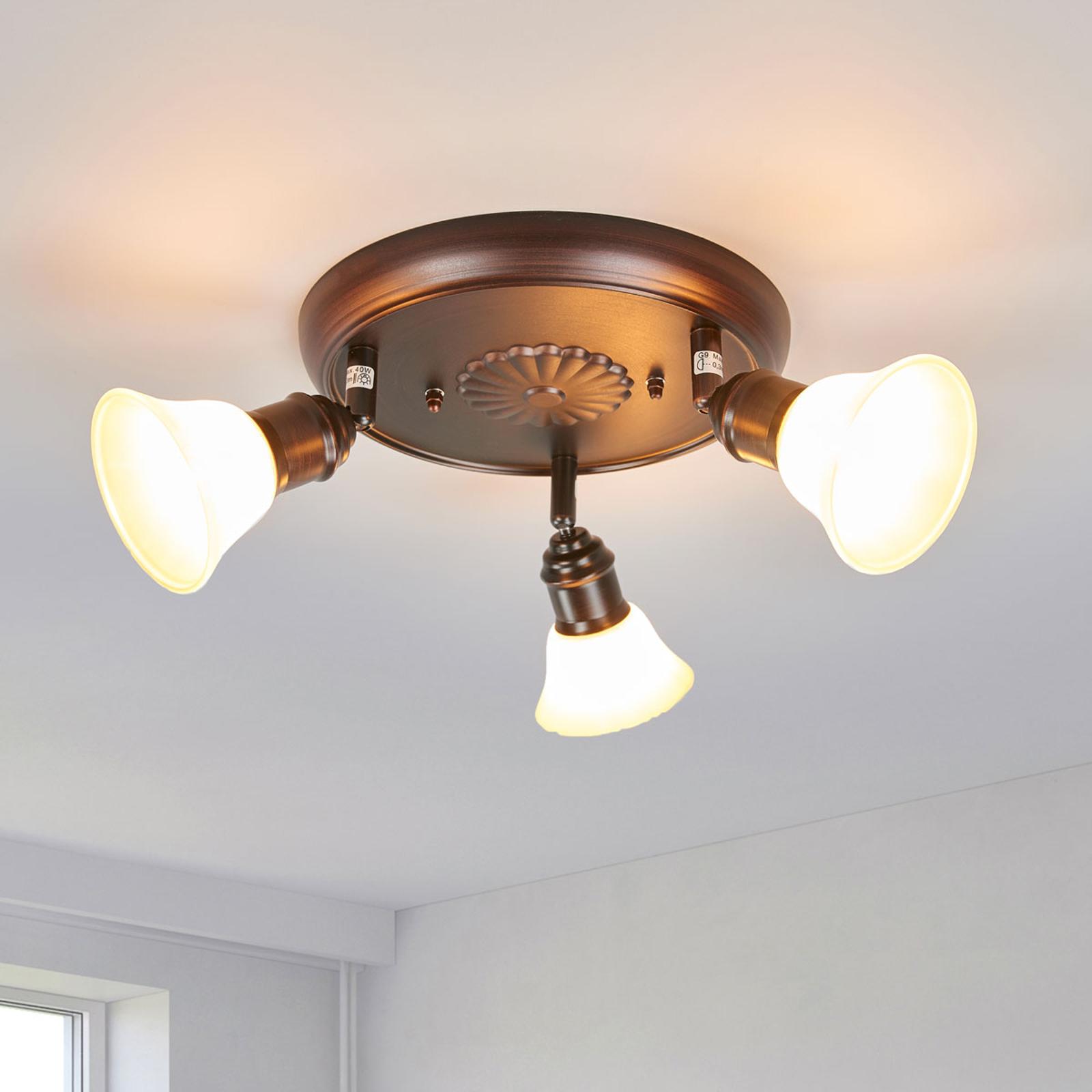 Lámpara de techo rústica Elma