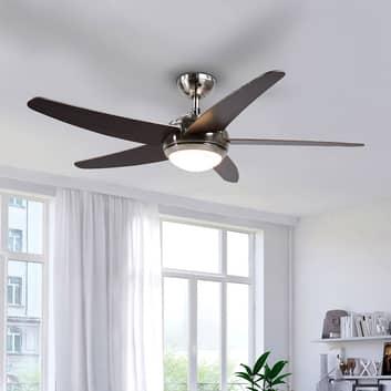 Ventilateur de plafond LED Anneka avec lumière