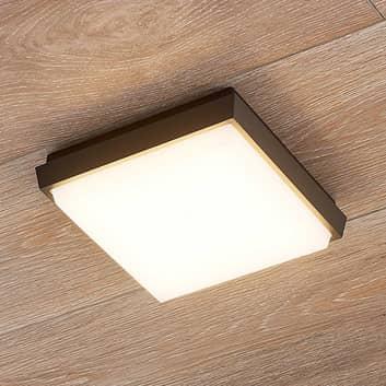 Lucande Amra -LED-ulkokattovalo, kulmikas 17,5 cm