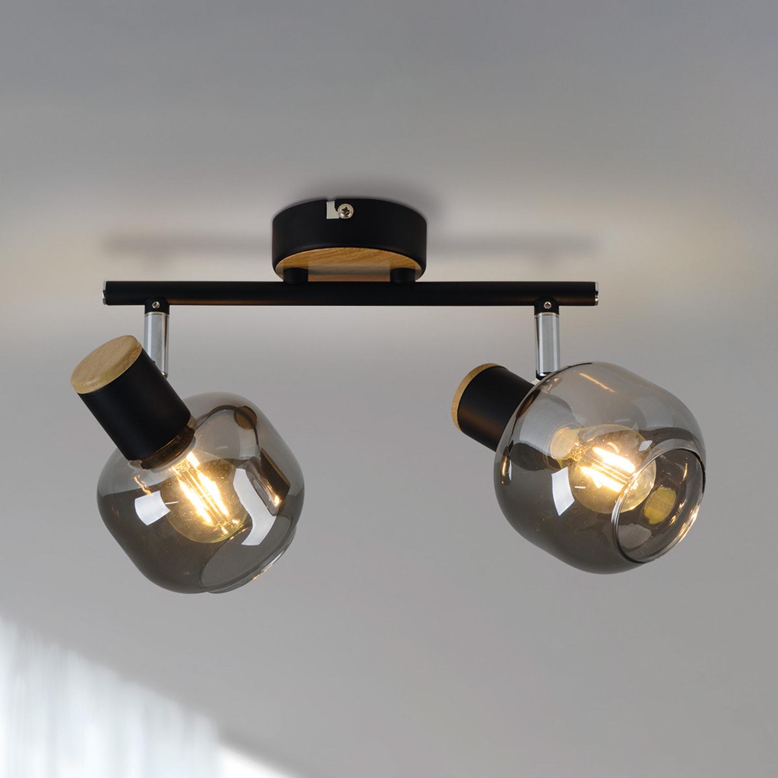 1350122 taklampe med røykglass, 2 lyskilder