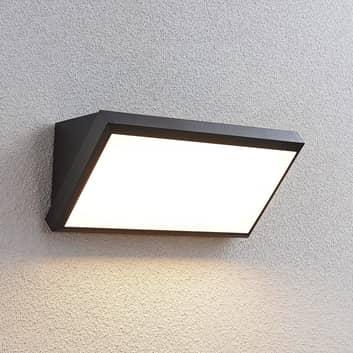 LED buitenwandlamp Abby zonder sensor