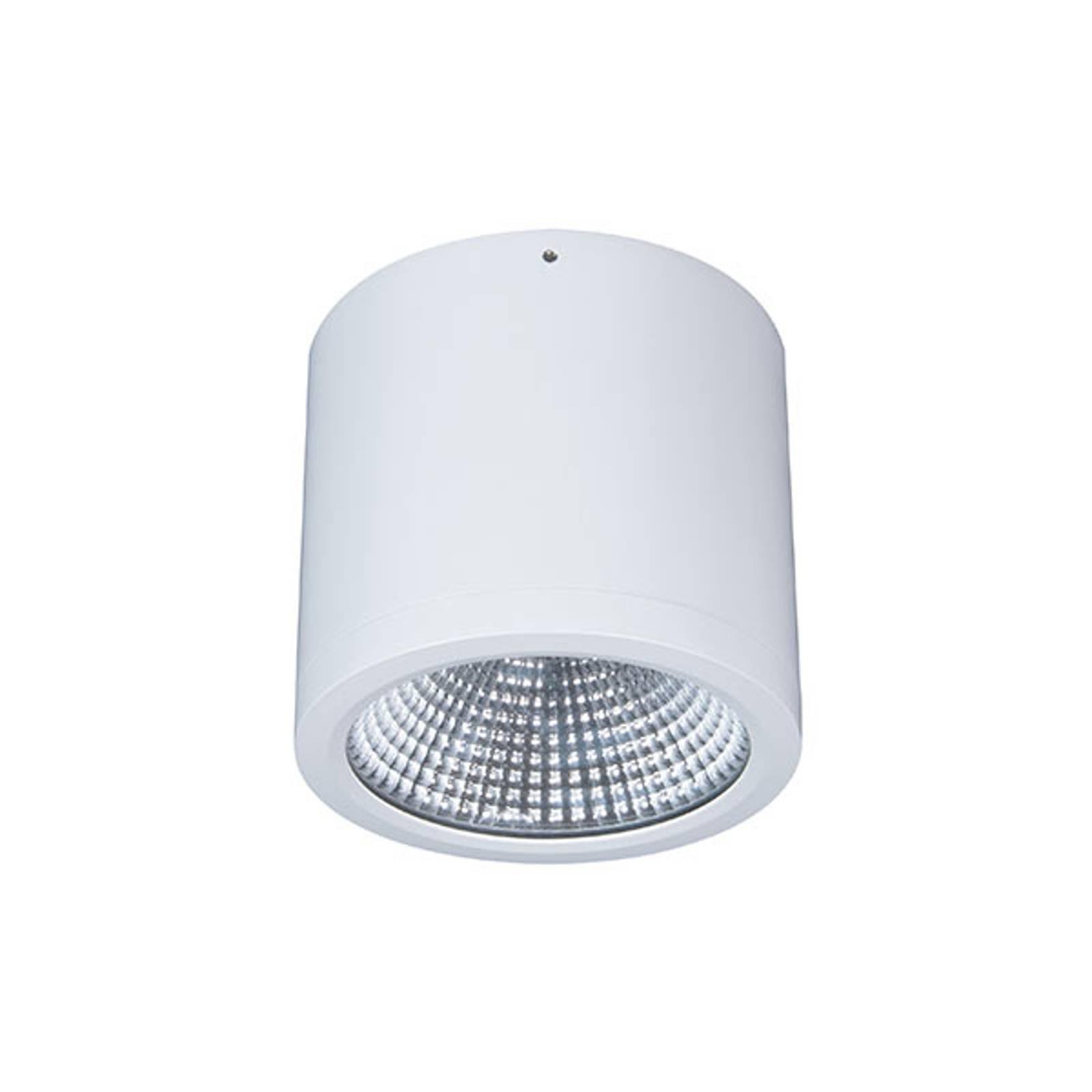 Downlight LED Button Mini 200 IP54 55° 24 W