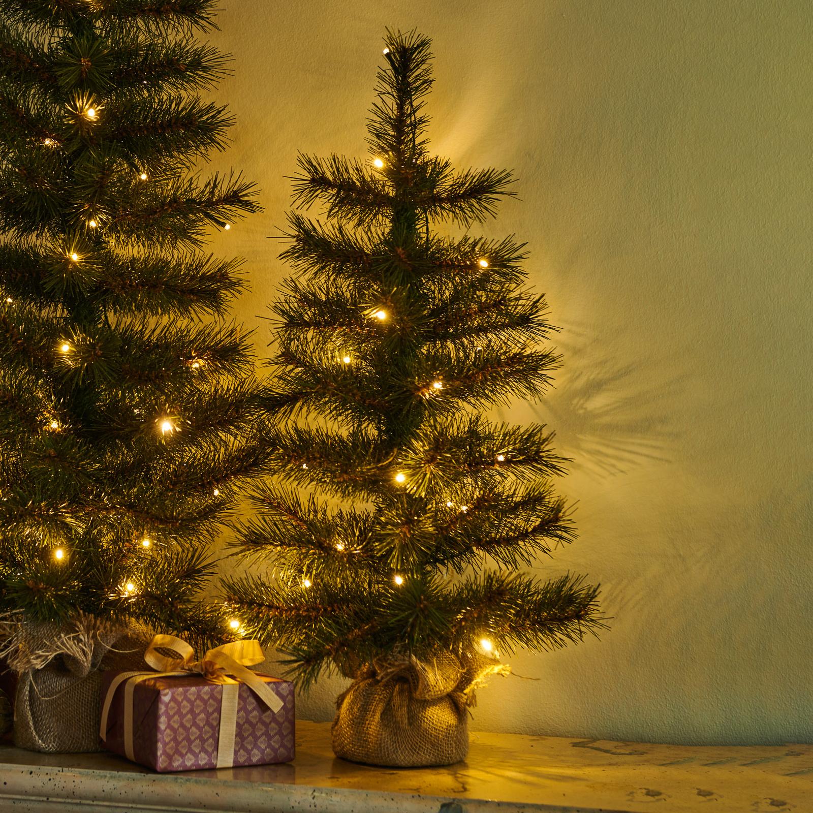 Árbol LED Alvin, interior y exterior altura 60 cm