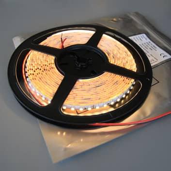 Strip LED Mono 600 bianco caldo 2.900 K IP20 48W