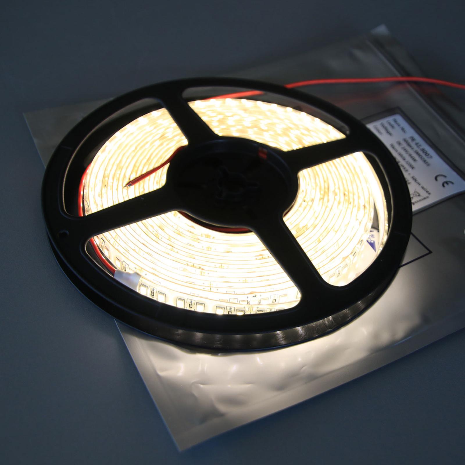 LED-Strip Mono 600 IP53 65 W Warmweiß 3.200 K