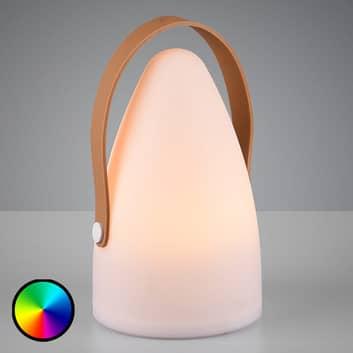 Lampada decorativa da esterni Haiti RGB a batteria