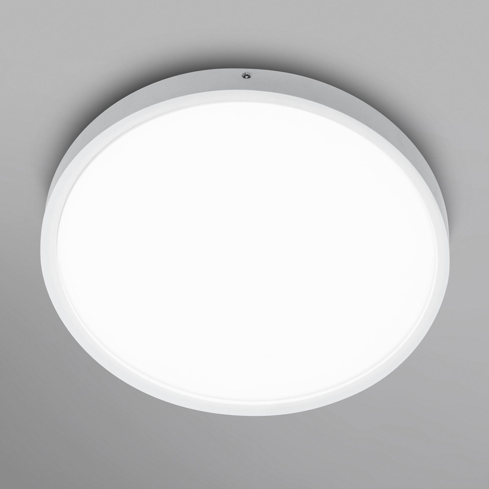 LEDVANCE Planon Round LED-taklampe 60cm 840