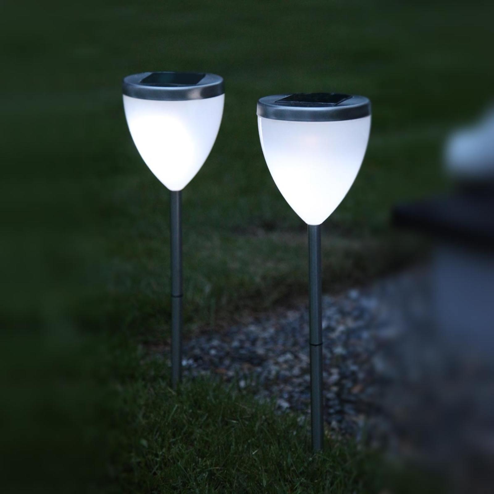 Decorativa lampada solare LED Jannik, set da 2