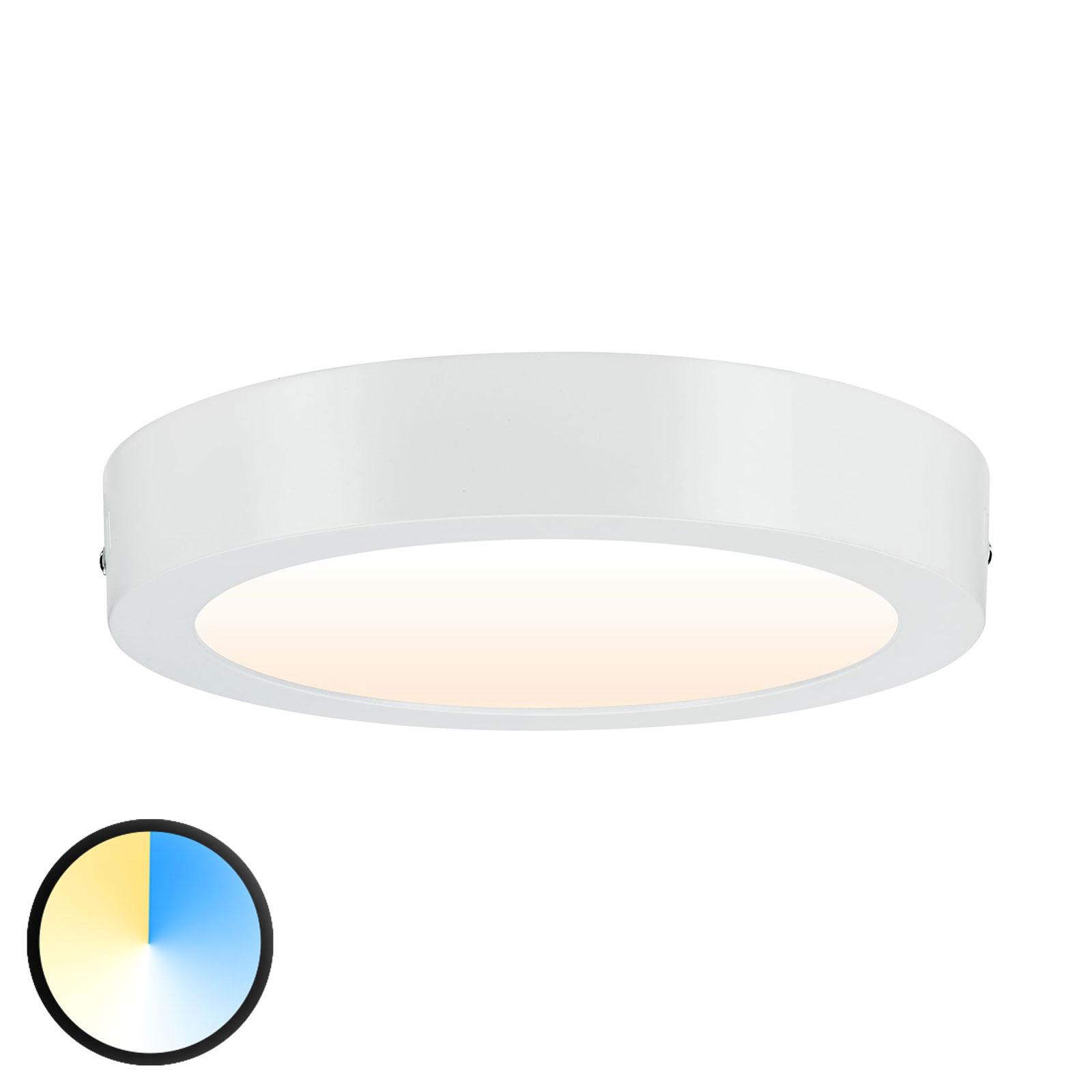 Paulmann Carpo LED plafondlamp rond wit 22,5cm