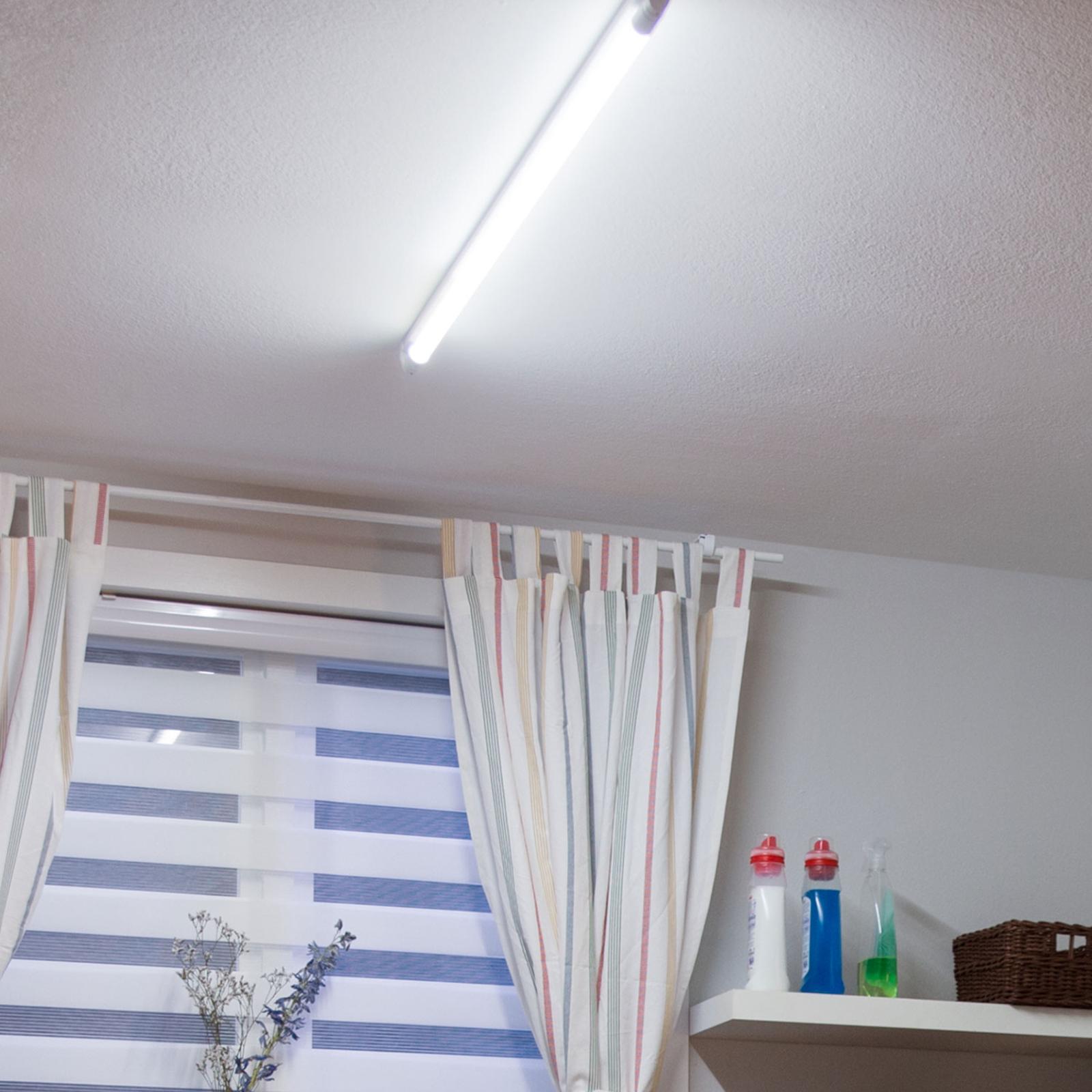 Philips LED-Tube T8 G13 60cm 8W  3.000K 750lm