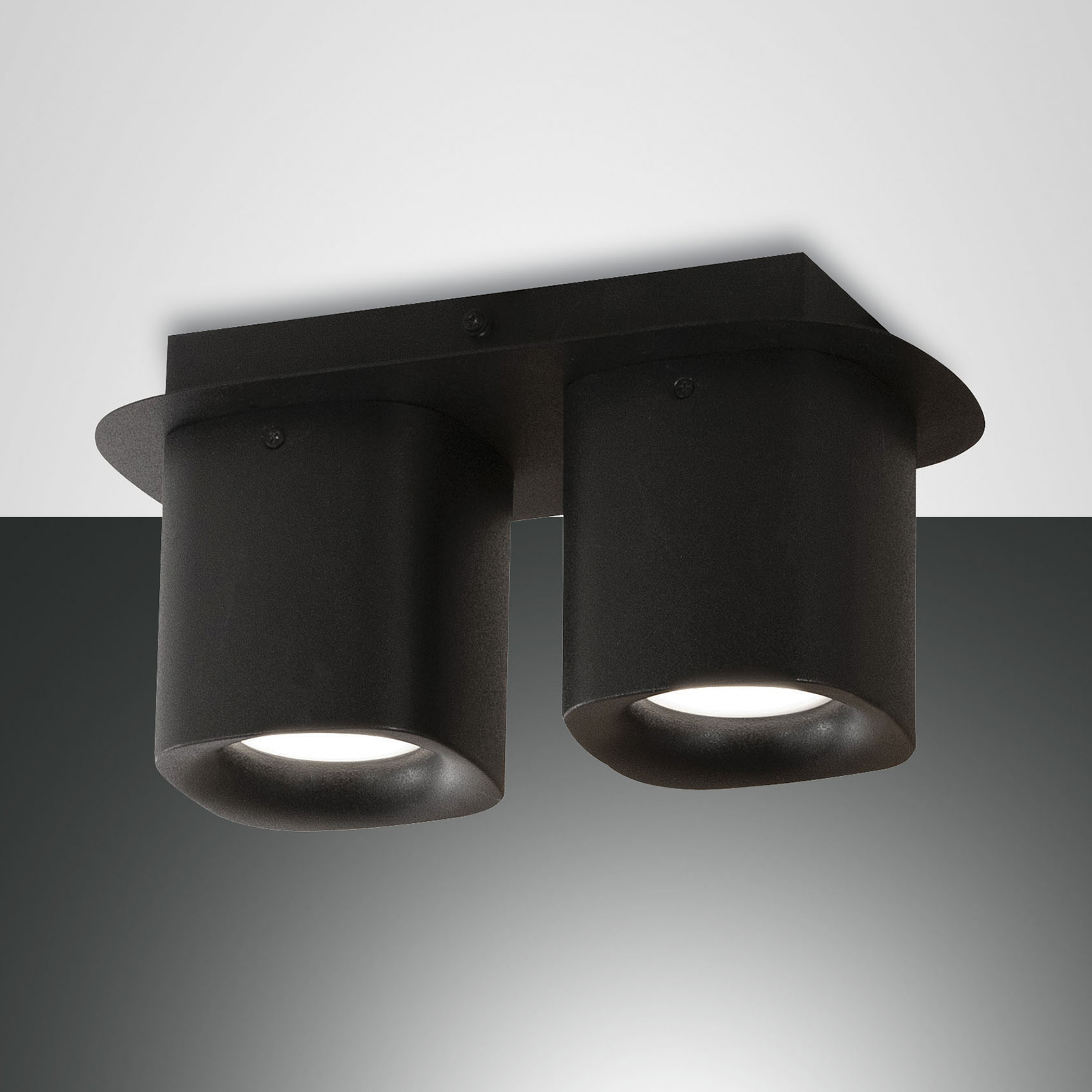 Plafondlamp Smooth, 2-lamps, zwart