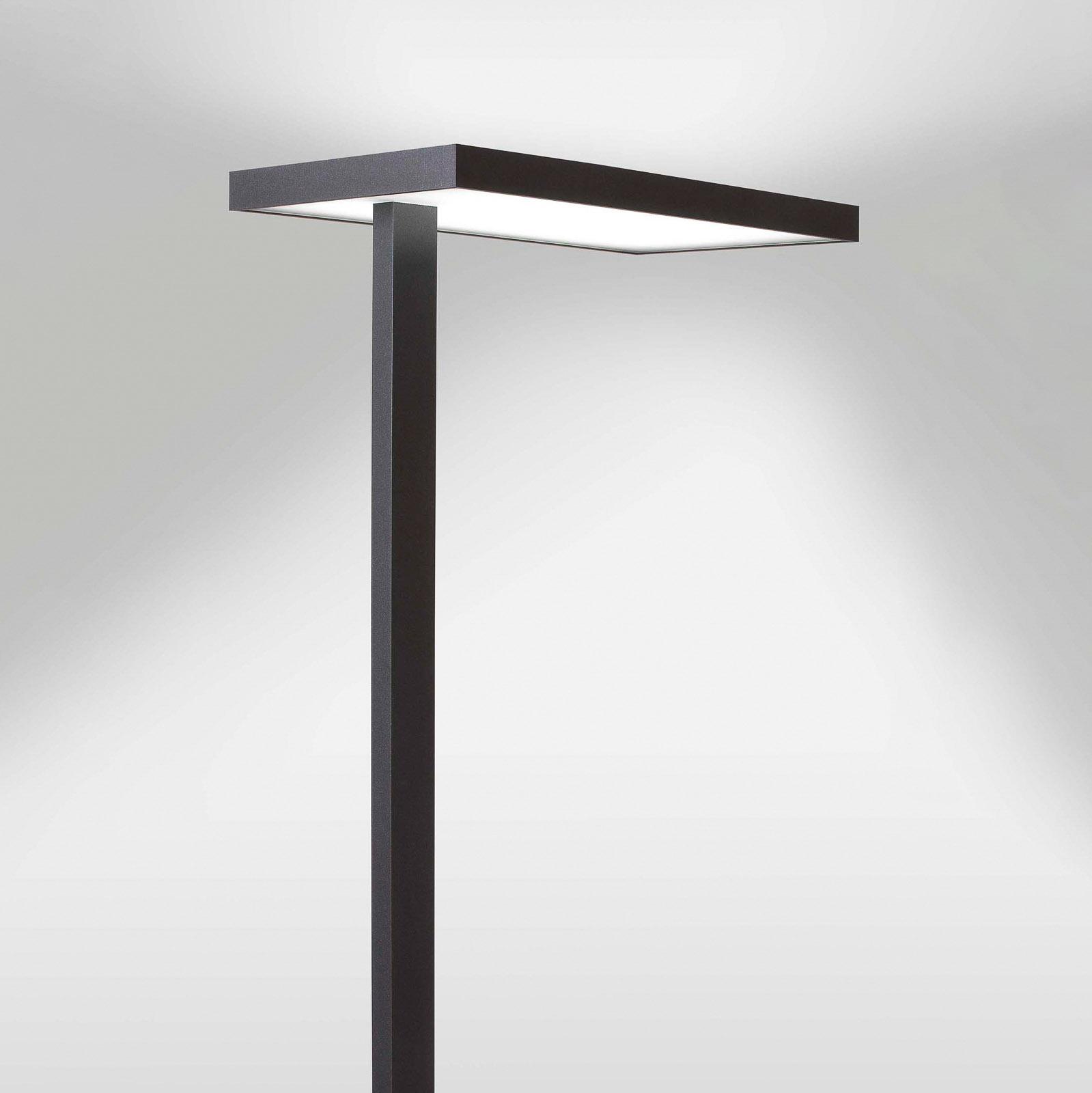 Lampa stojąca biurowa LED Lola, 3000K, DALI