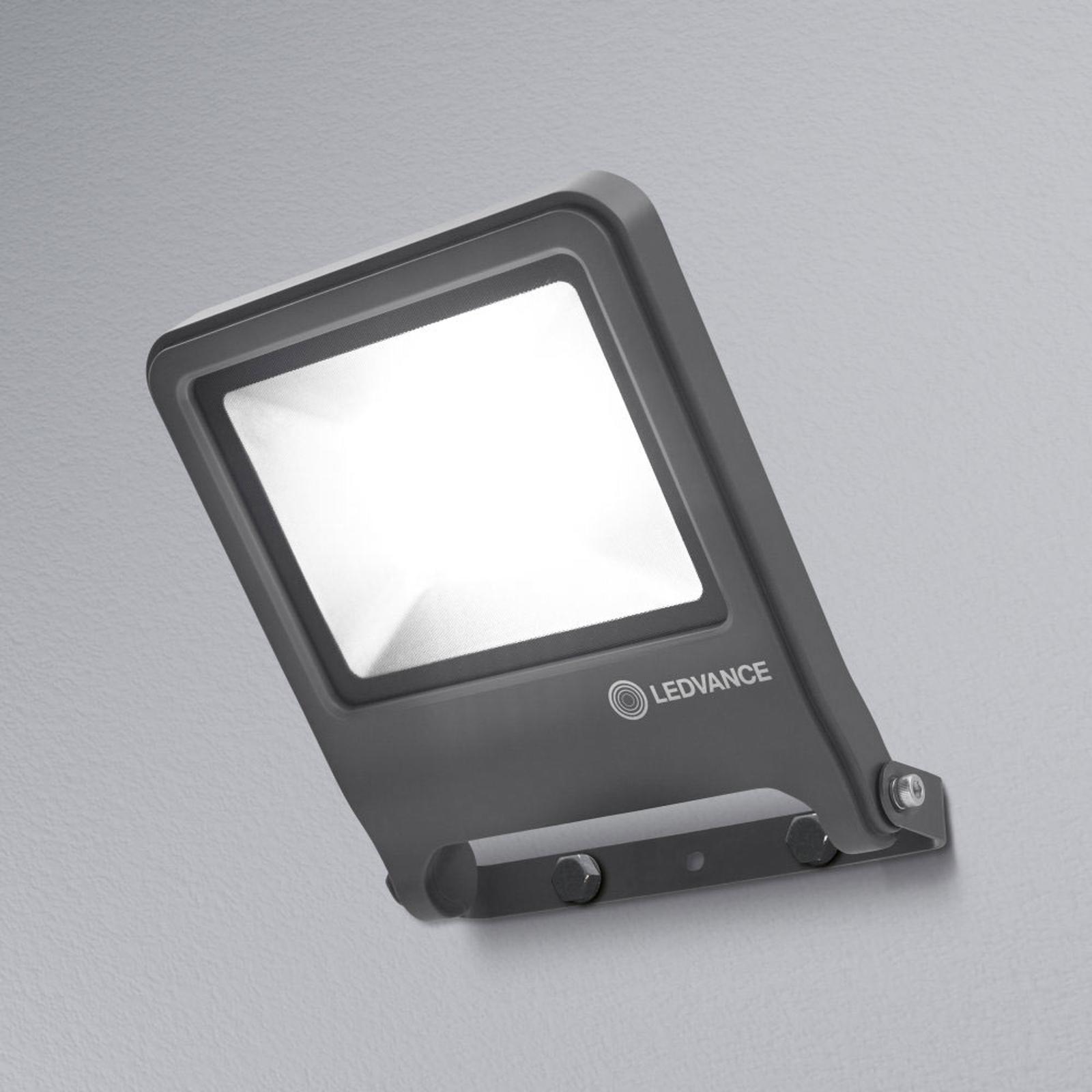 LEDVANCE Endura Floodlight LED-Außenstrahler 50W