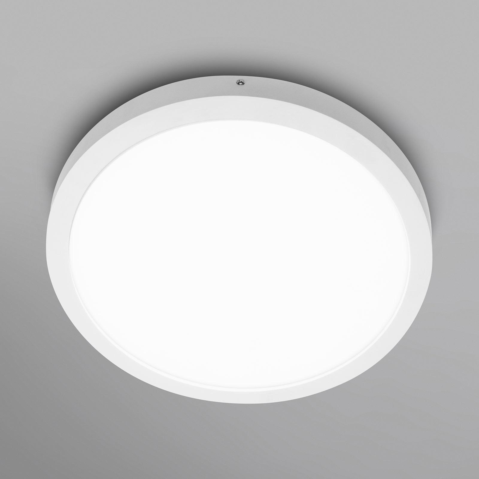 LEDVANCE Planon Round LED-vegglampe 40 cm 840