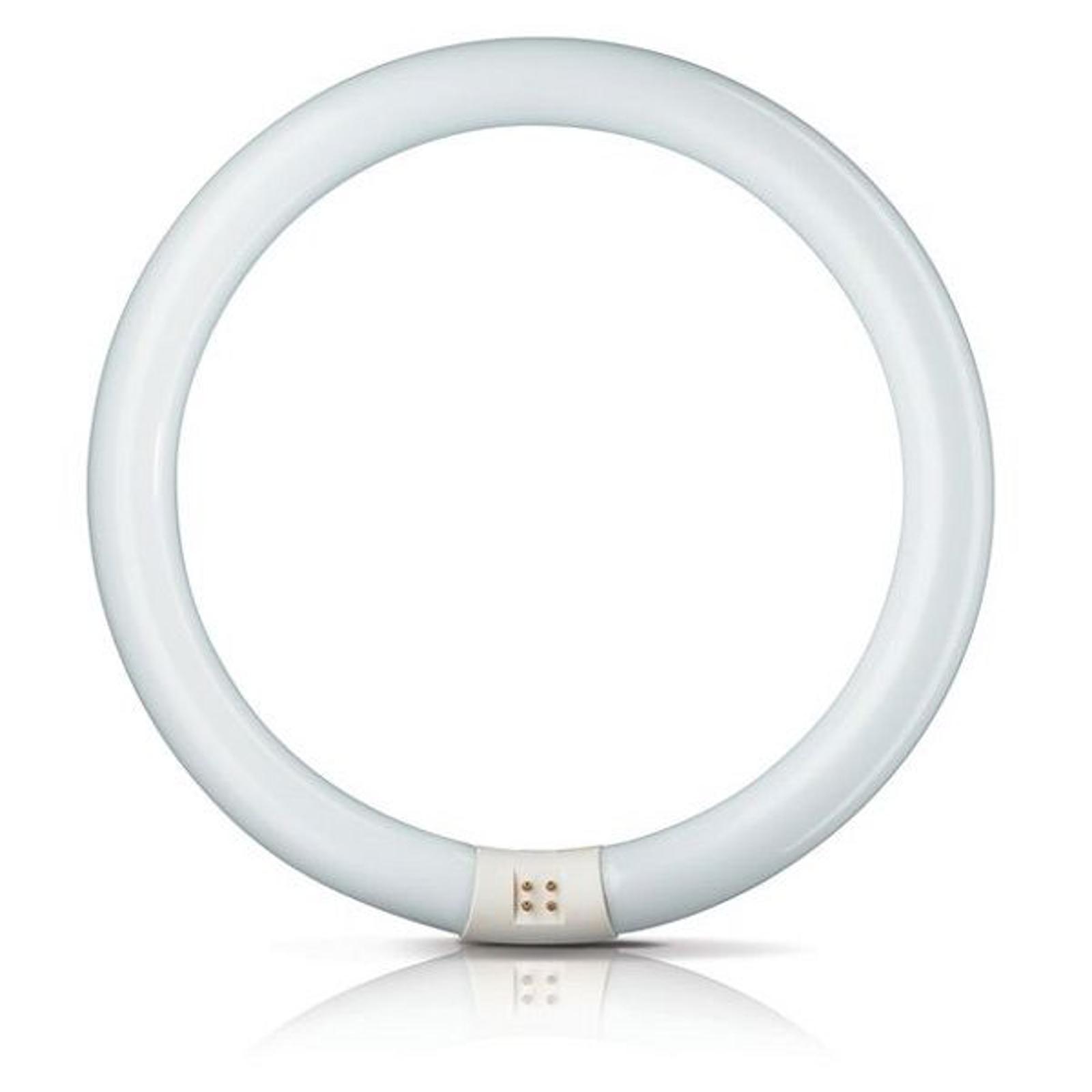 G10q 22W 840 Leuchtstoffring Master Circular TL-E