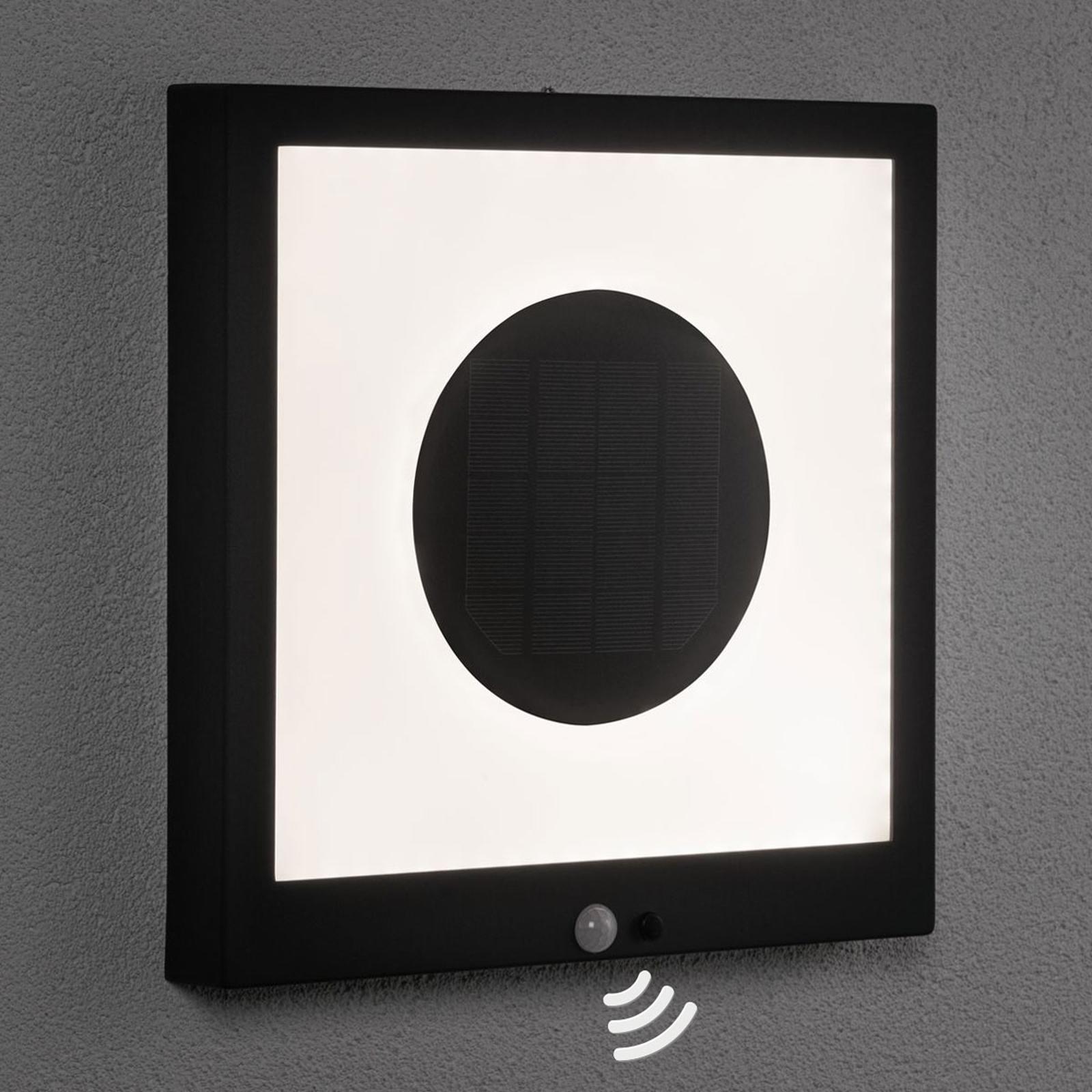 Acquista Paulmann pannello LED solare Taija con sensore