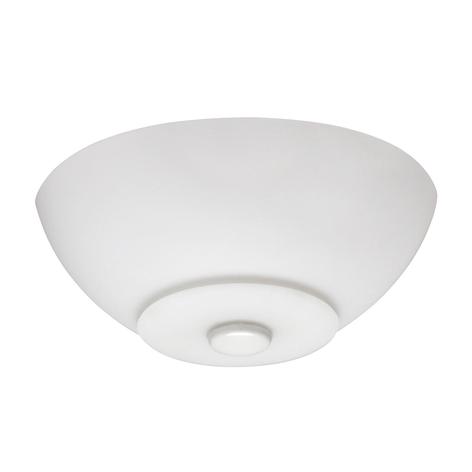 Hunter Flight Light Kit para ventilador del techo