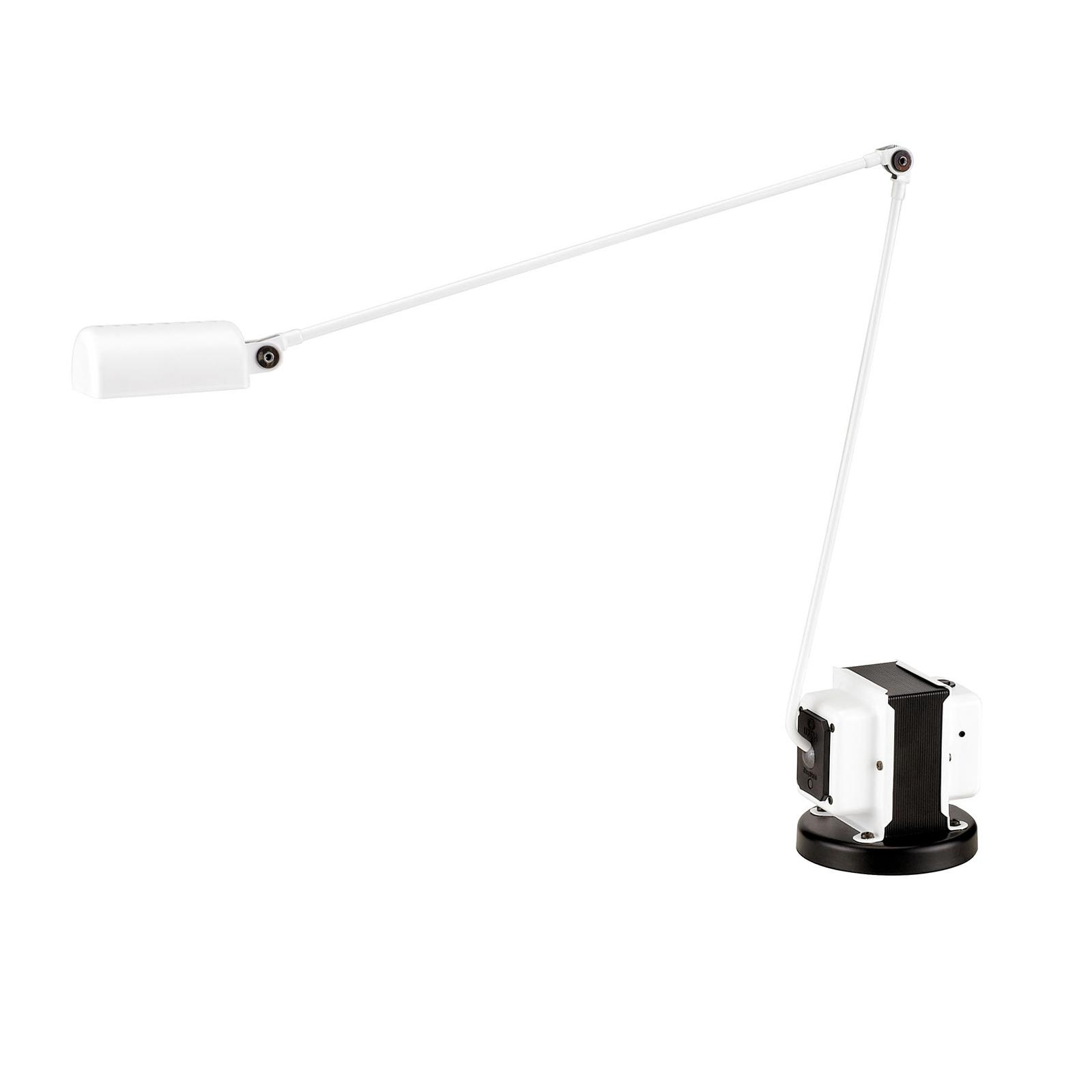 Lumina Daphine LED-Tischleuchte 3.000K, weiß
