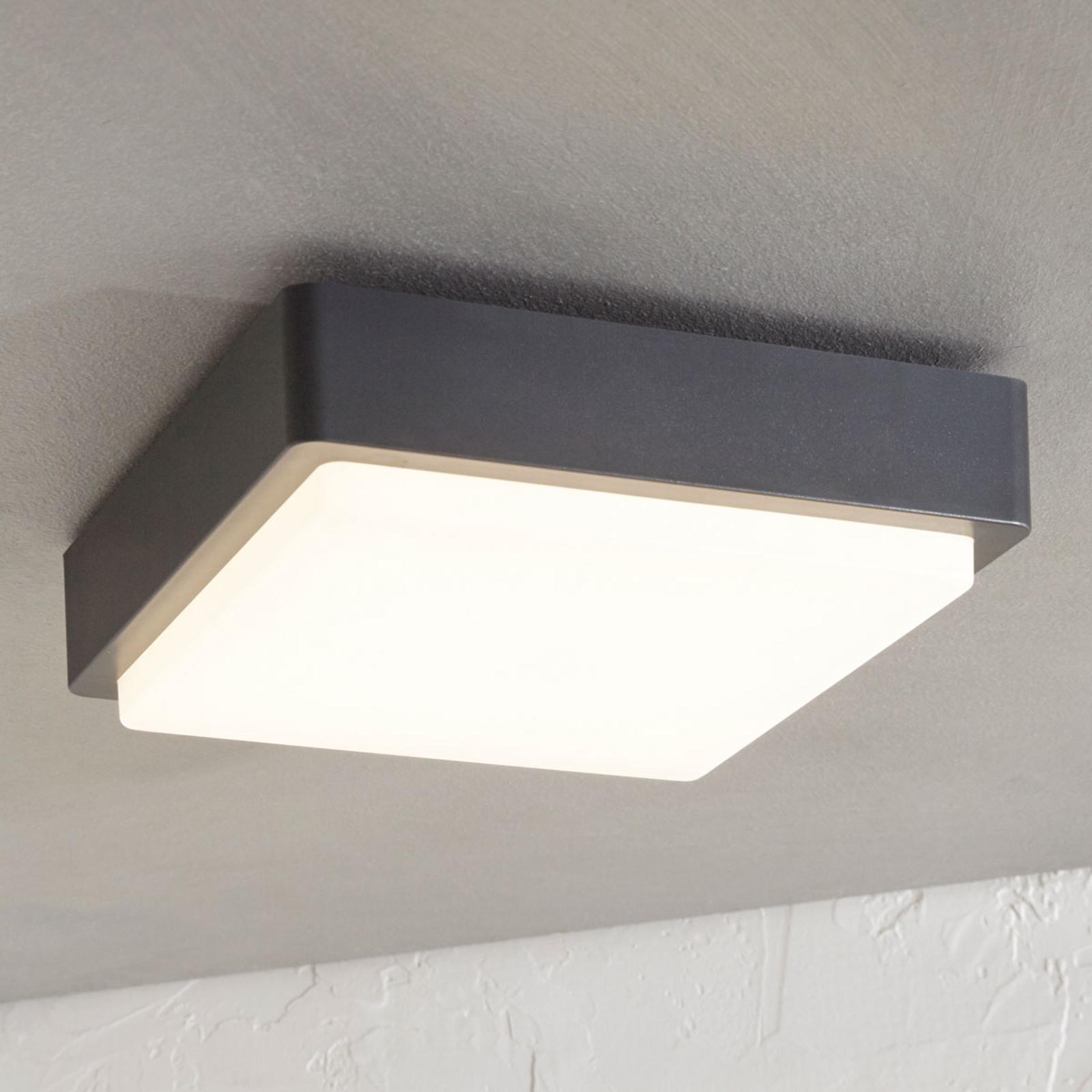 LED-Außendeckenlampe Nermin, IP65, eckig