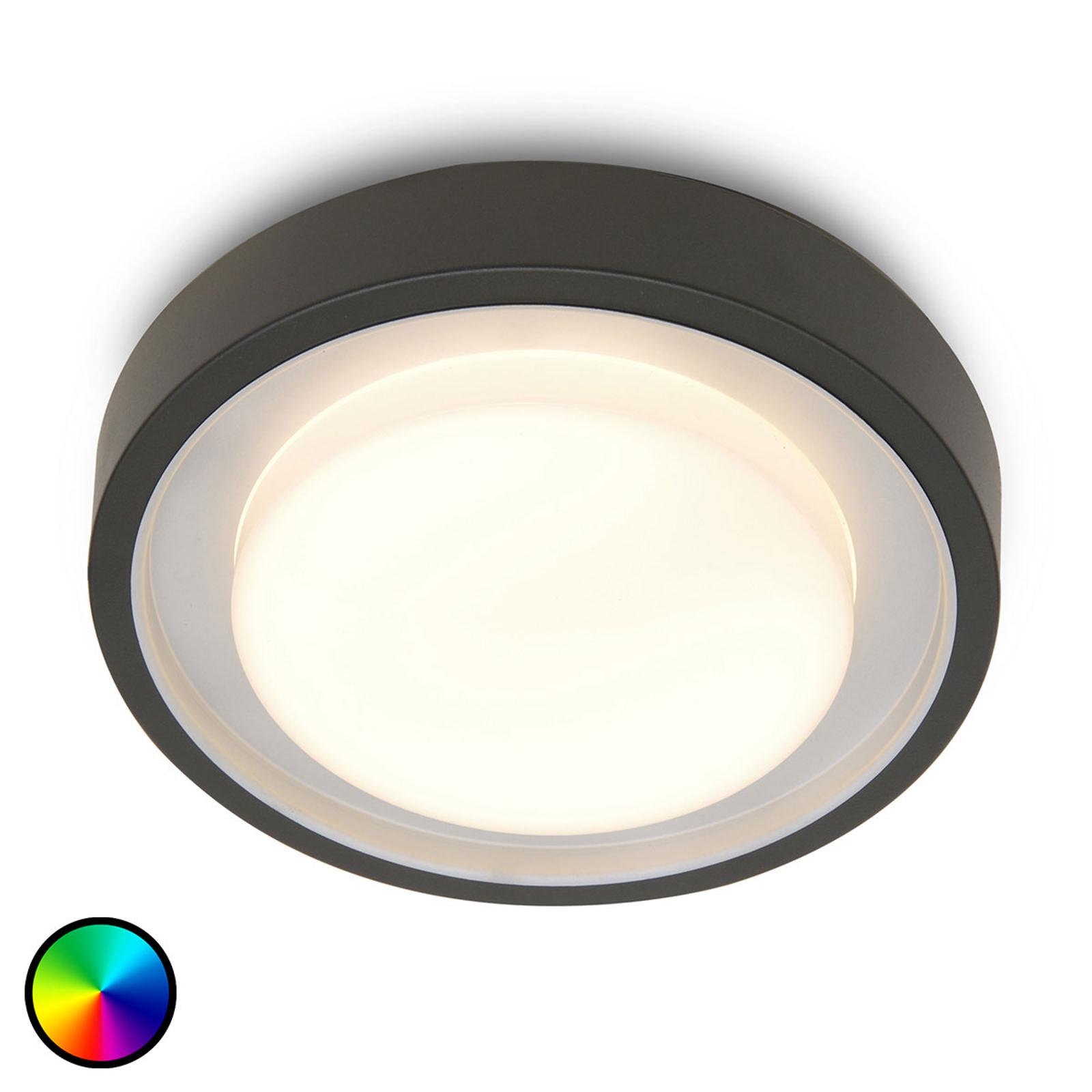 WiZ luminaire d'extérieur LED Origo