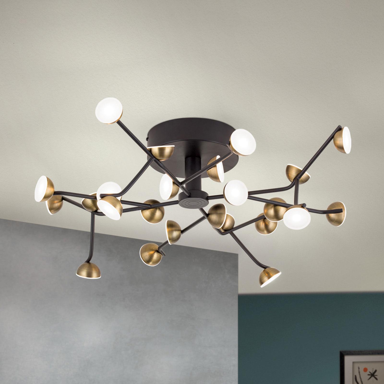 Plafonnier LED Blossom, à 24 lampes