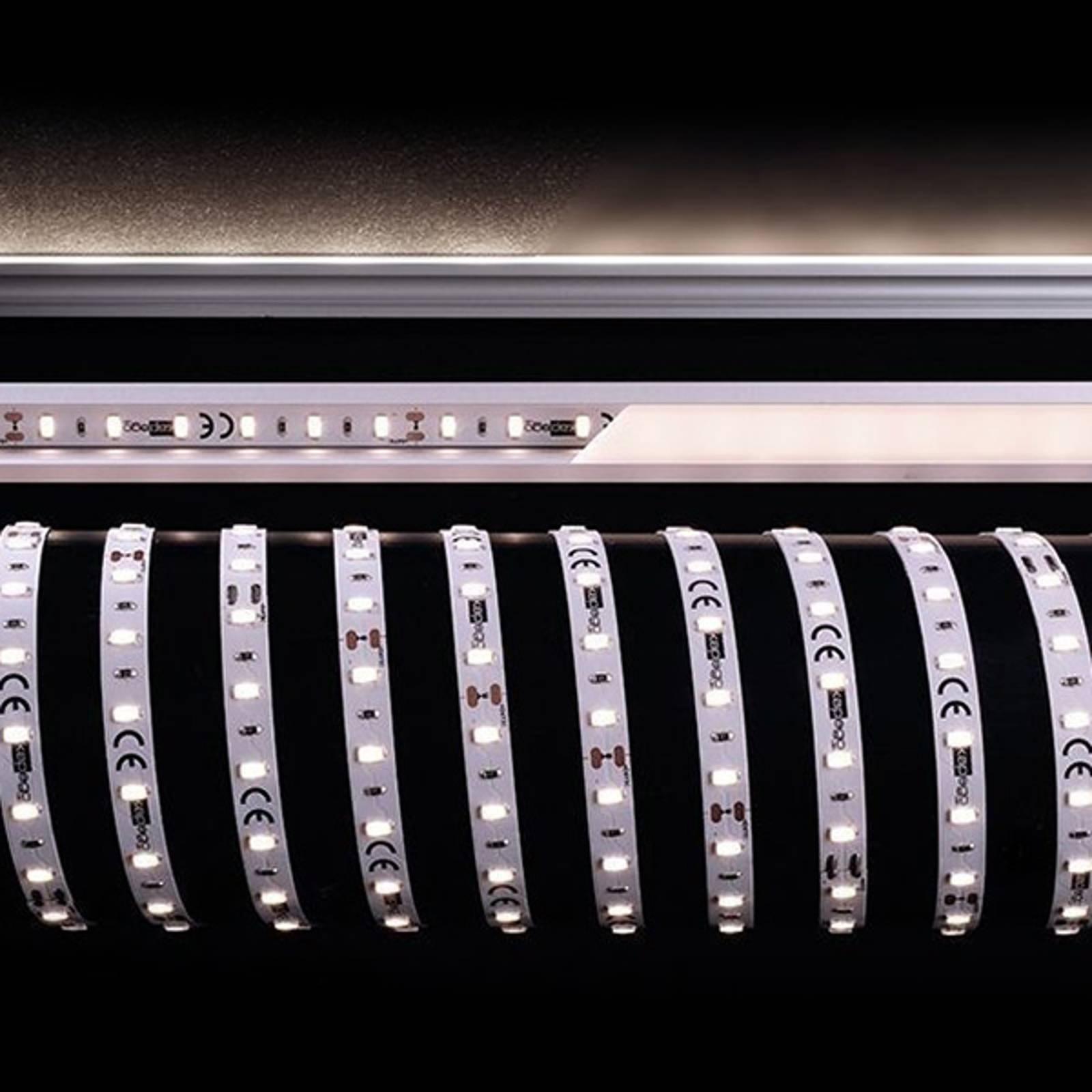Strip LED flessibile, 85 W, 500x1x0,2 cm, 4.000 K