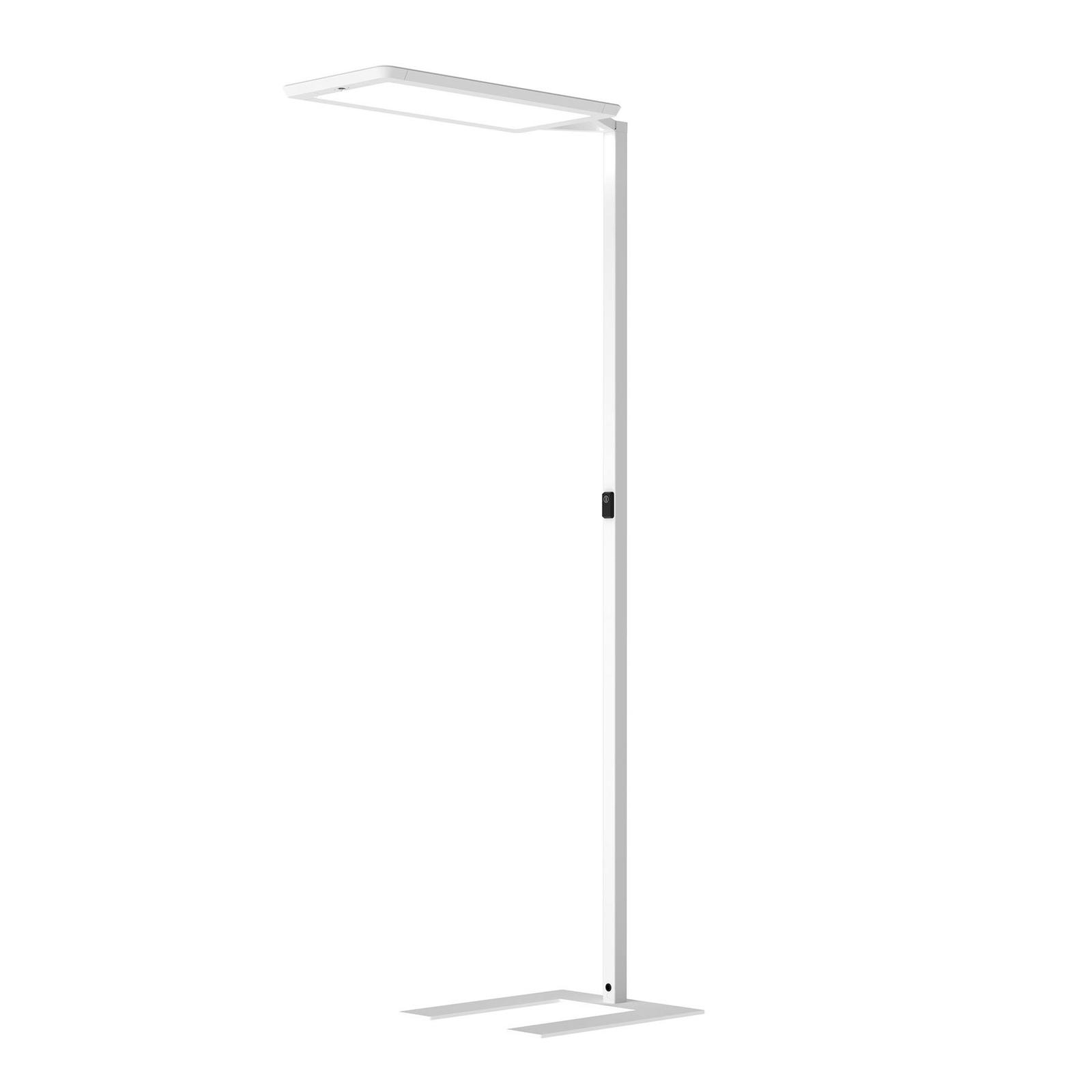LED-Stehlampe Yara.single 4.000K, BT, PIR, weiß