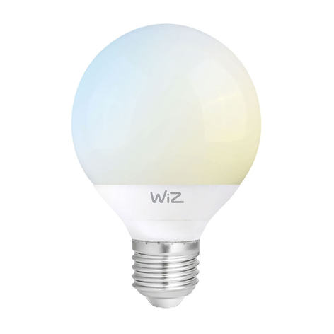 WiZ E27 LED globe G95 satinato 12W 2.700-6.500K