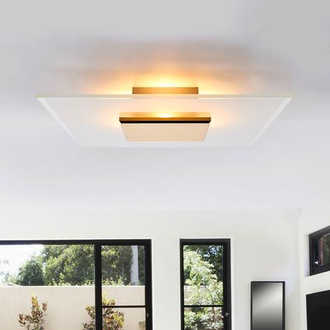 LED stropní světlo Lole, skleněné stínidlo