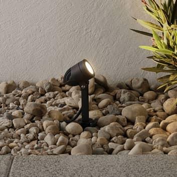 Timko -musta LED-maapiikkikohdevalaisin, IP65