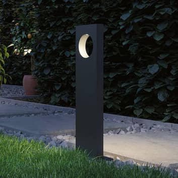 Paulmann Plug & Shine LED-veilampe Ivo