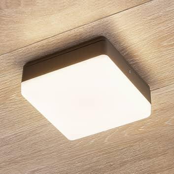 LED stropní svítilna Thilo, IP54, šedá, 16cm