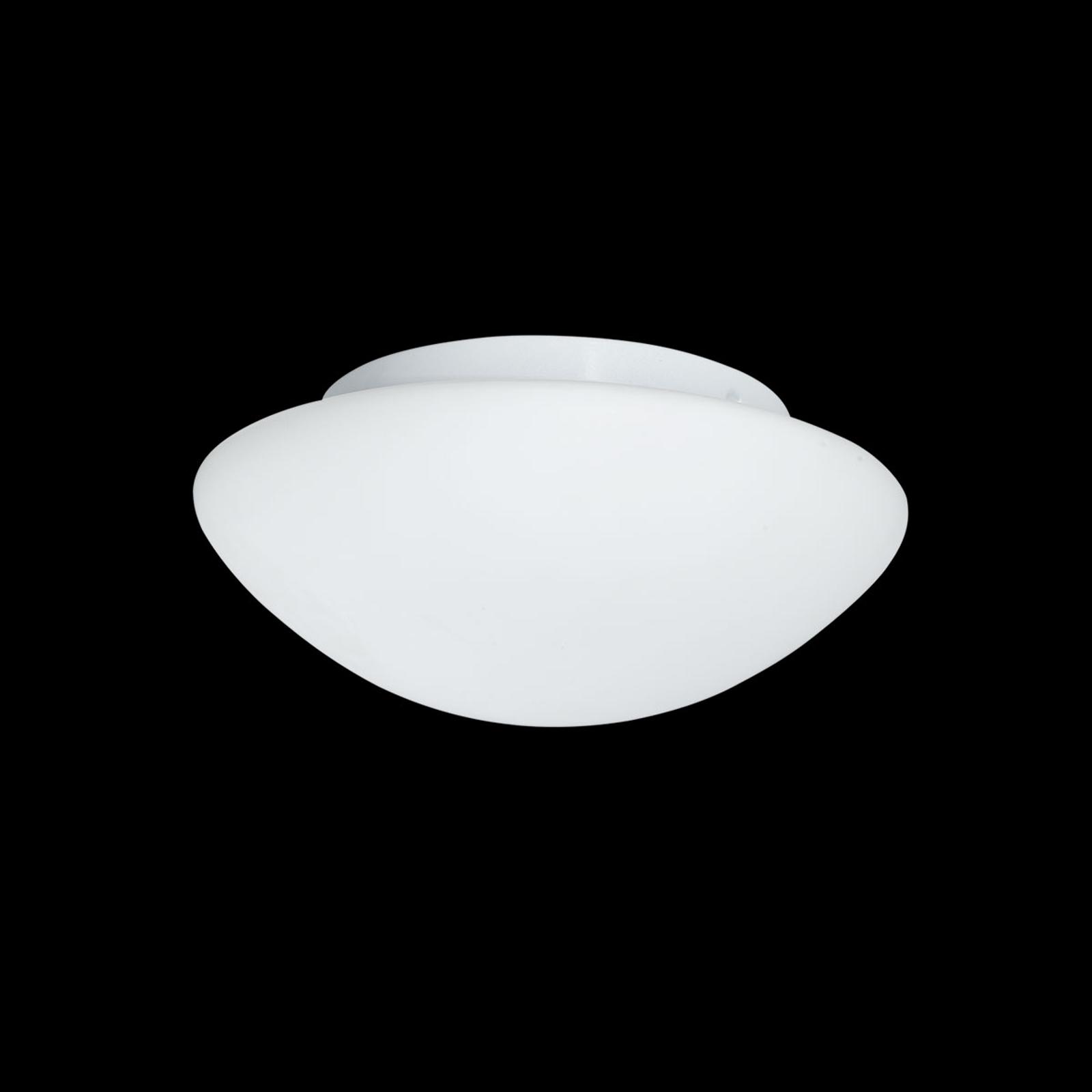 Szklana lampa sufitowa zewnętrzna Wayne 23 cm IP44