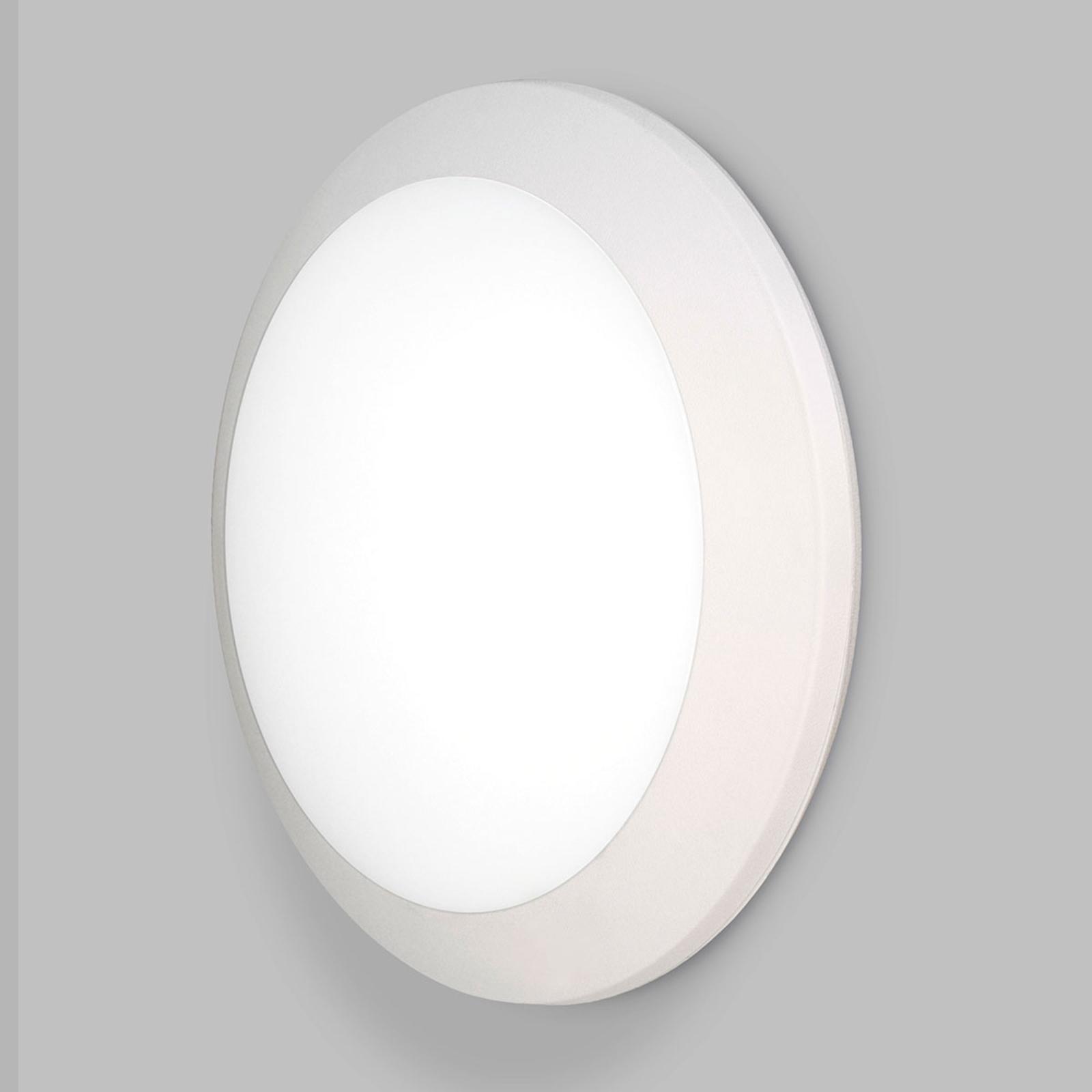 Utendørs LED-vegglampe Umberta Ø35 cm hvit 11W CCT
