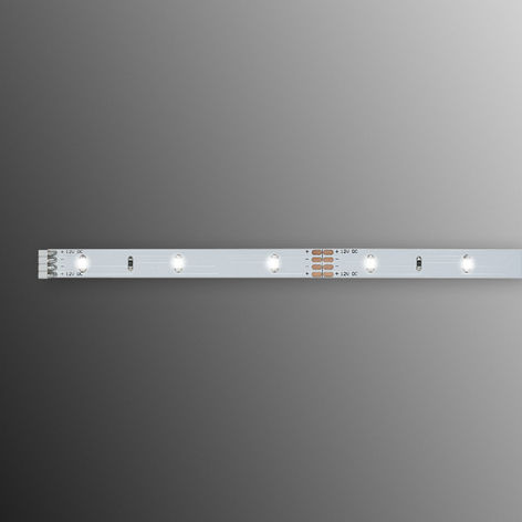 Bande LED de 1 m Function YourLED Eco, blanche, bn