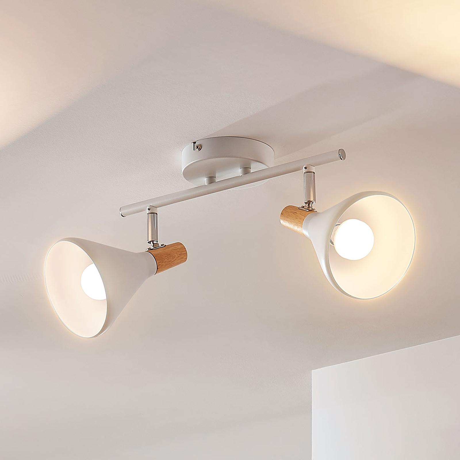 LED-Deckenlampe Arina in Weiß, 2-flammig