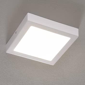 Plafón LED Fueva Connect cuadrado, 22,5 cm