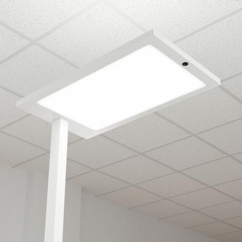 Almira LED-gulvlampe til kontor med dæmper, hvid