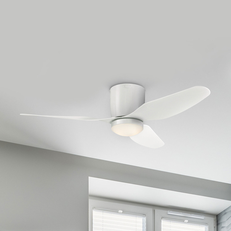 Westinghouse Carla plafondventilator met LED, wit