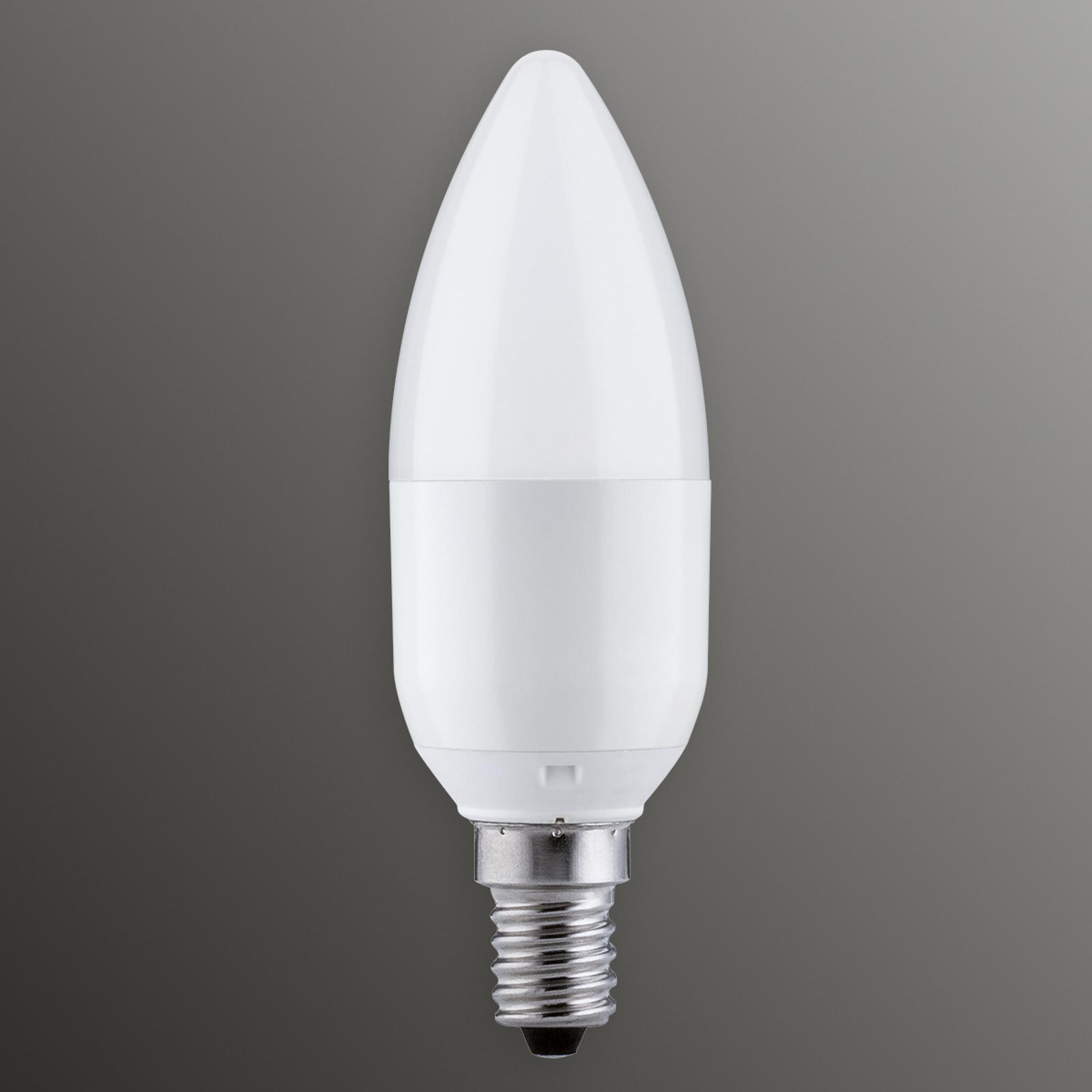 Paulmann LED-Kerzenlampe E14 5,5W 827, dimmbar