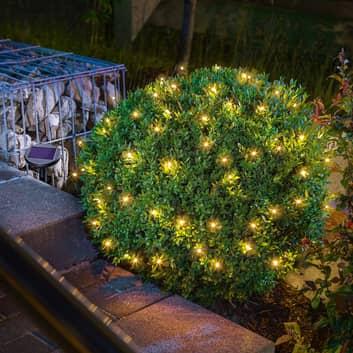 LED-sollyslenke Premium med 60 LED-lys