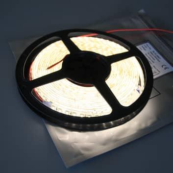 LED-nauha Mono 600 IP53 65 W lämmin valkoinen