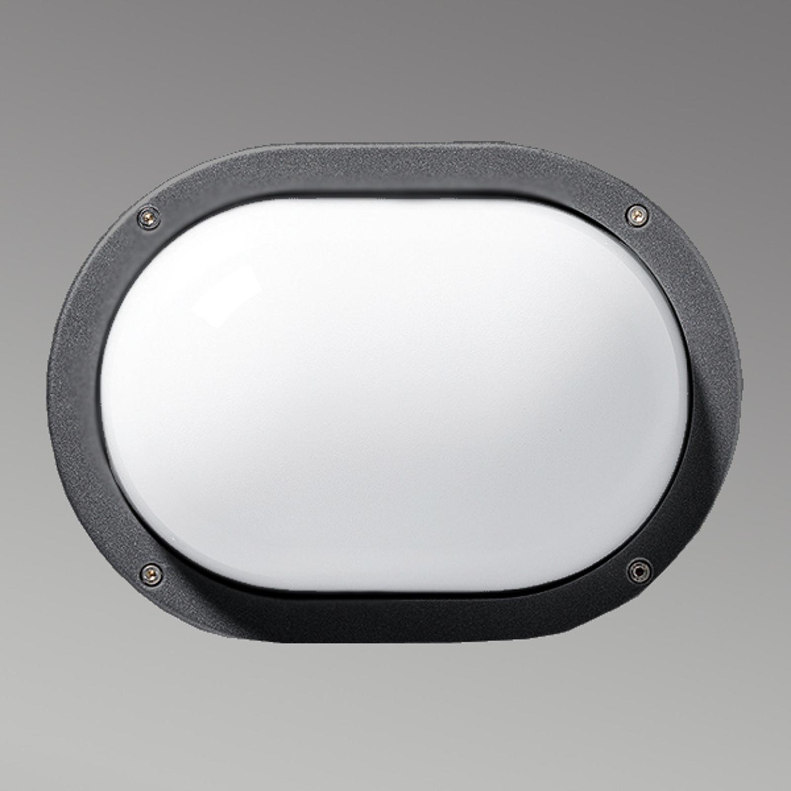 Praktische buitenwandlamp EKO, antraciet