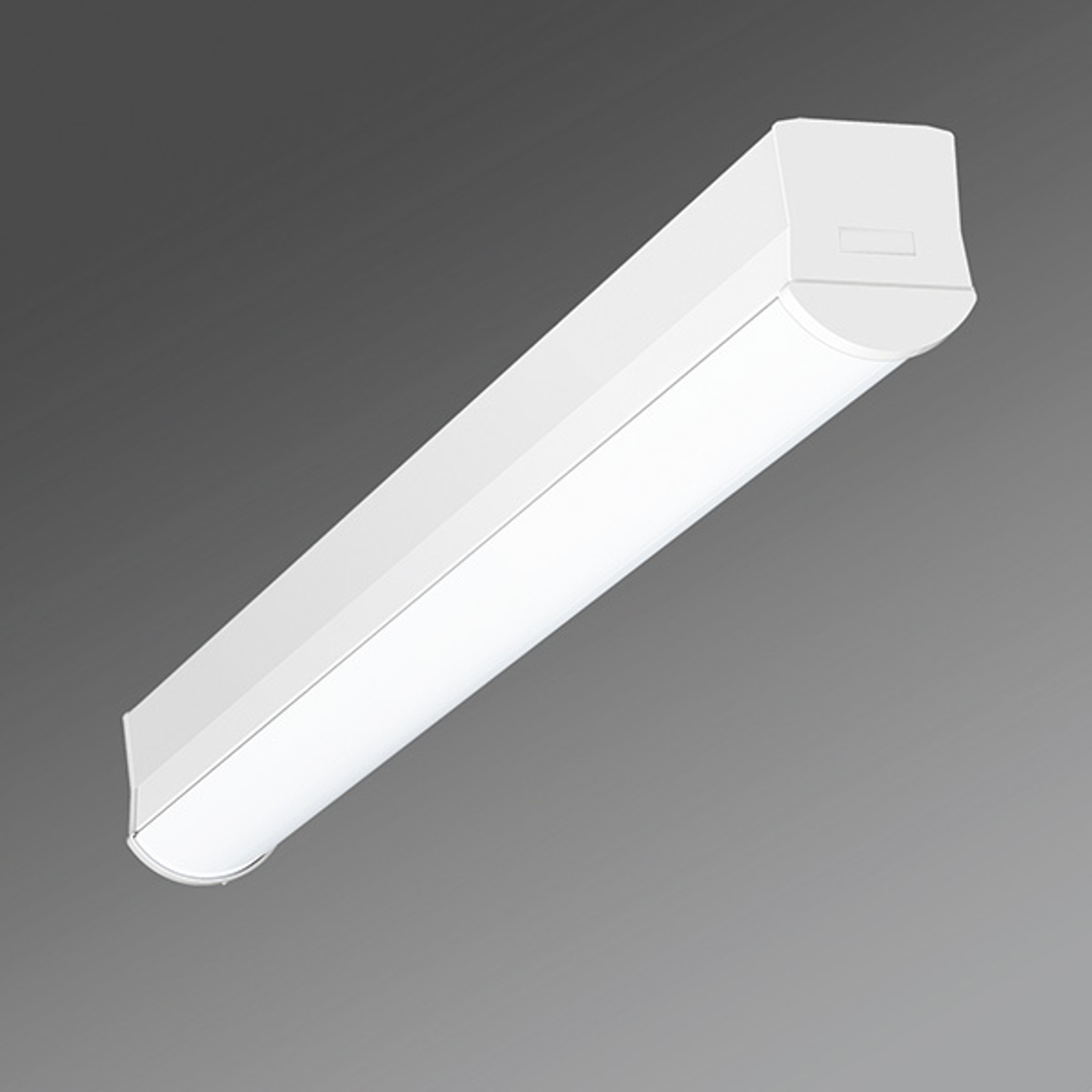 Smalle LED plafondlamp Ilia-ILG/0600 4.000K