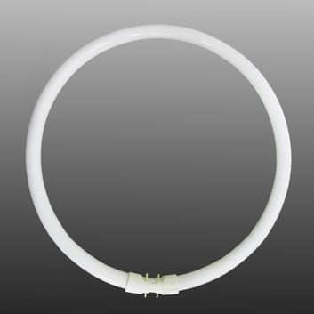 2GX13 T5 ringformet lysstoffrør